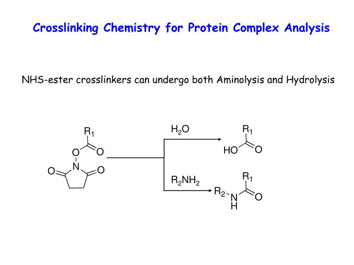 Crosslinking Chemistry for Protein Complex Analysis