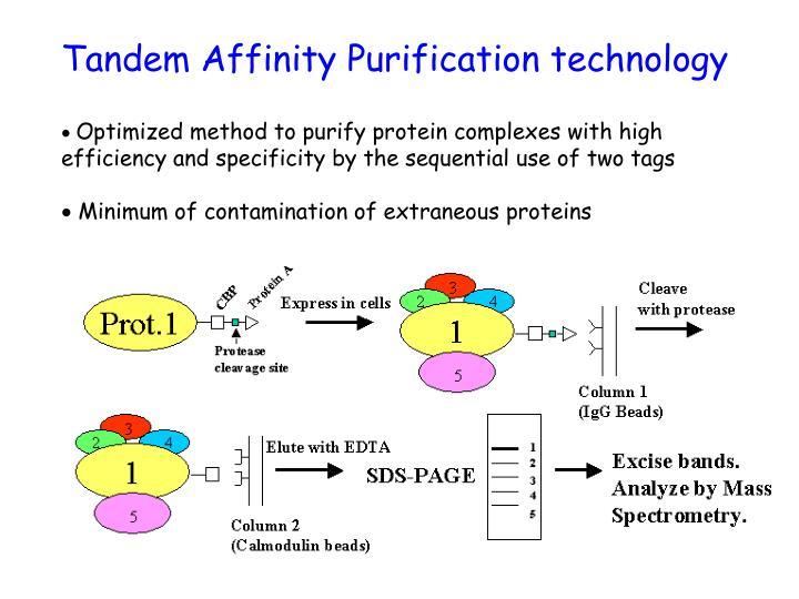 Tandem Affinity Purification technology