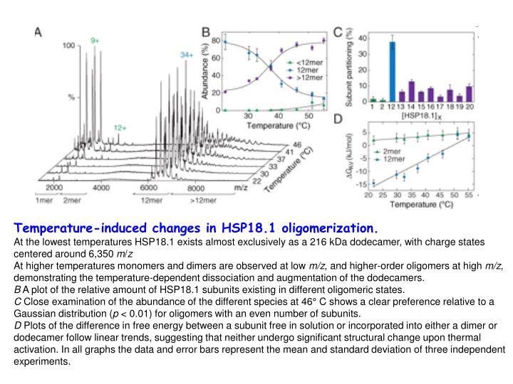 Temperature-induced changes in HSP18.1 oligomerization.