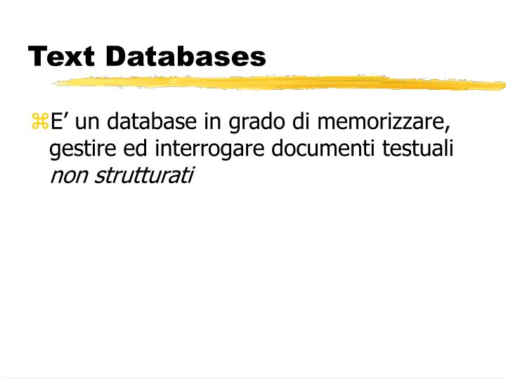Text databases1