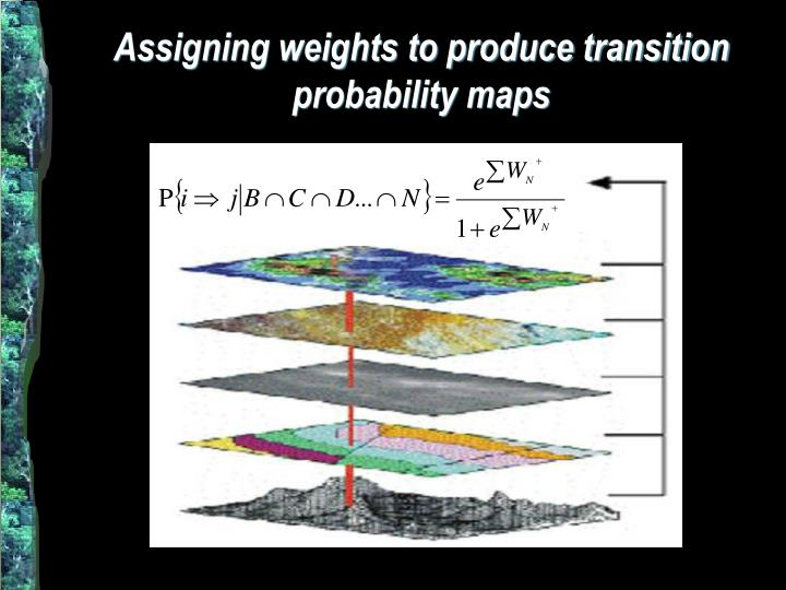 Assigning weights to produce transition probability maps