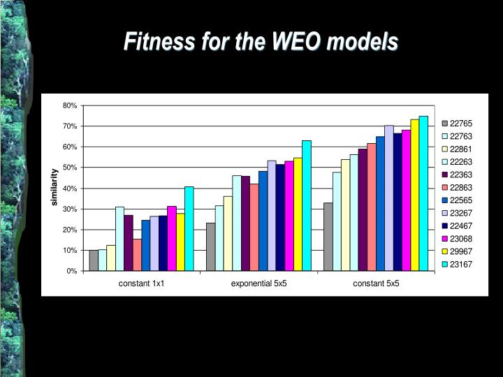 Fitness for the WEO models
