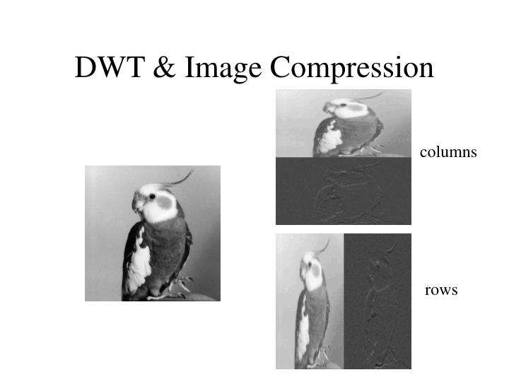 DWT & Image Compression