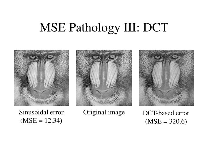 MSE Pathology III: DCT
