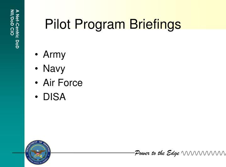 pilot program briefings n.