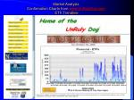 market analysis confirmation charts from www unrulydog com etf trendline