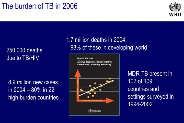 The burden of TB in 2006
