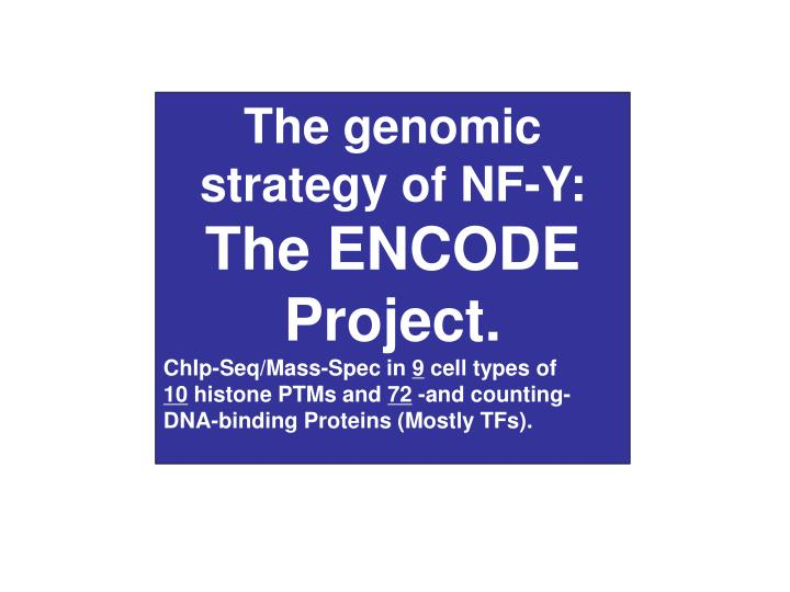 The genomic strategy of NF-Y:
