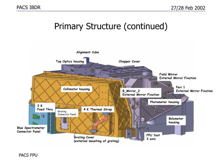 Primary structure continued