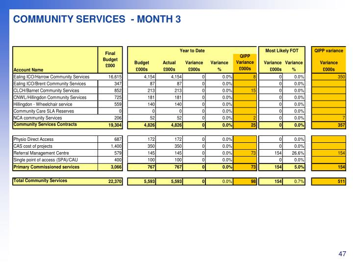 COMMUNITY SERVICES  - MONTH 3