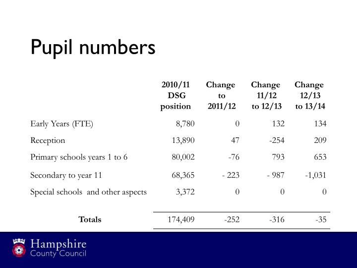 Pupil numbers