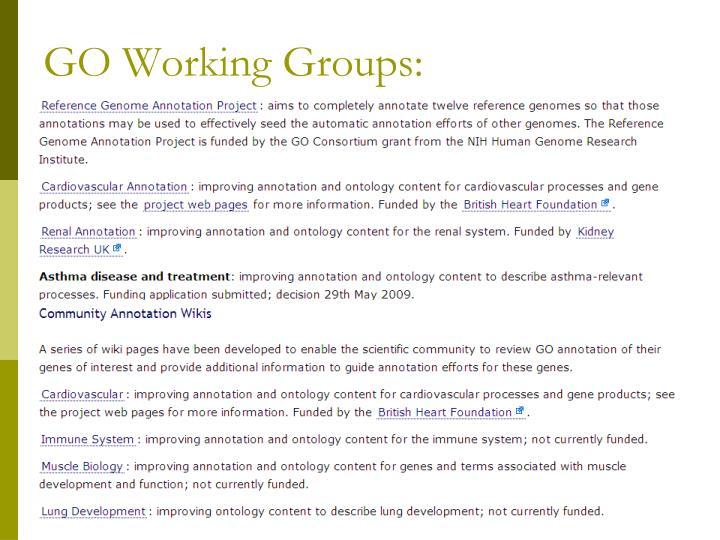 GO Working Groups:
