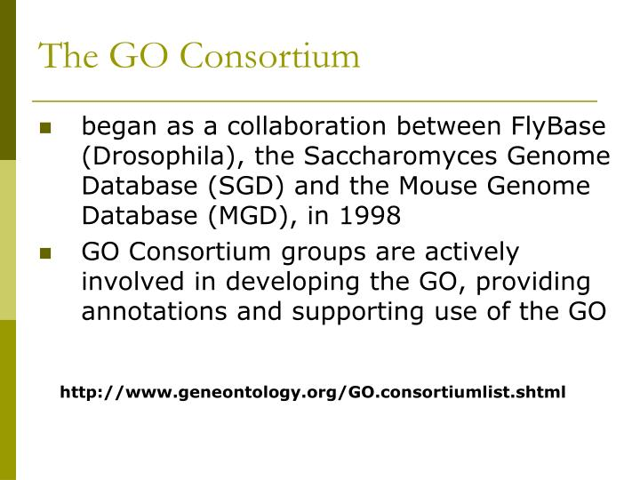 The GO Consortium