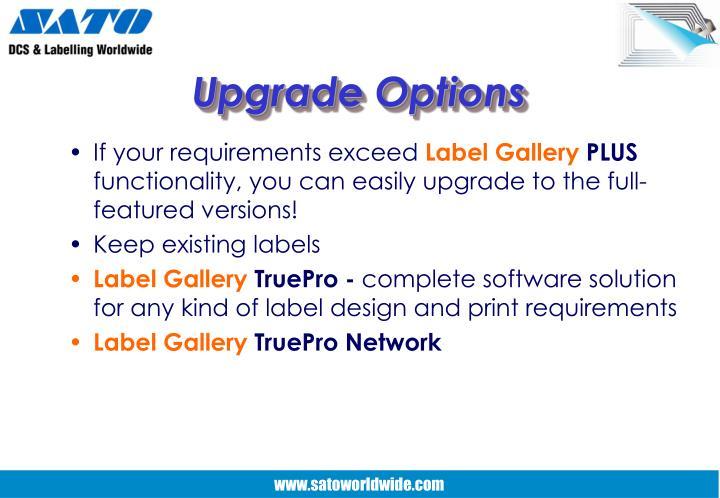 Upgrade Options