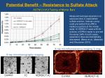 potential benefit resistance to sulfate attack