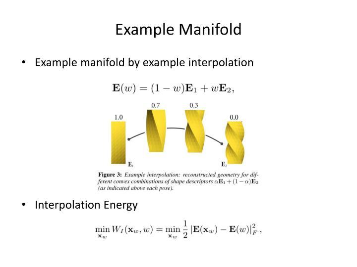 Example Manifold