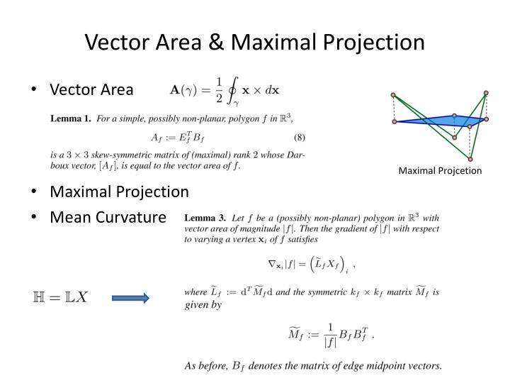 Vector Area & Maximal Projection