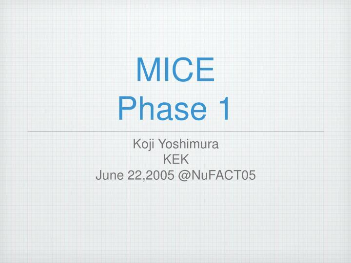 mice phase 1 n.