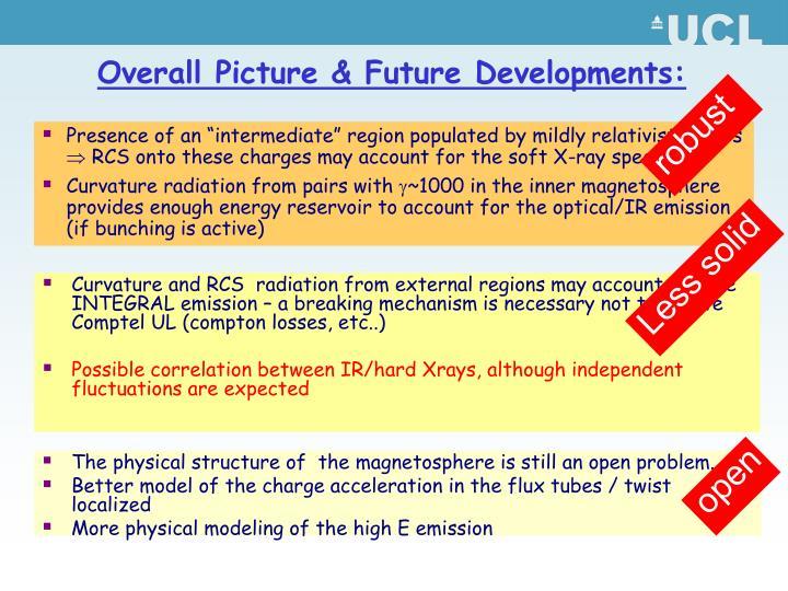 Overall Picture & Future Developments: