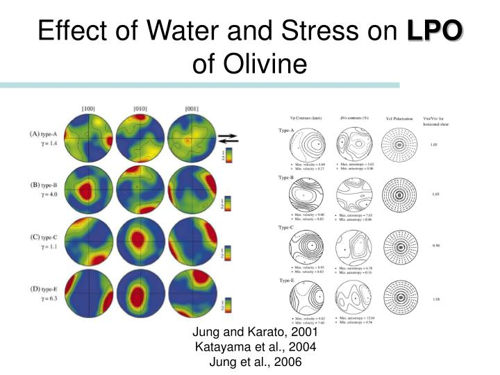 Effect of Water and Stress on