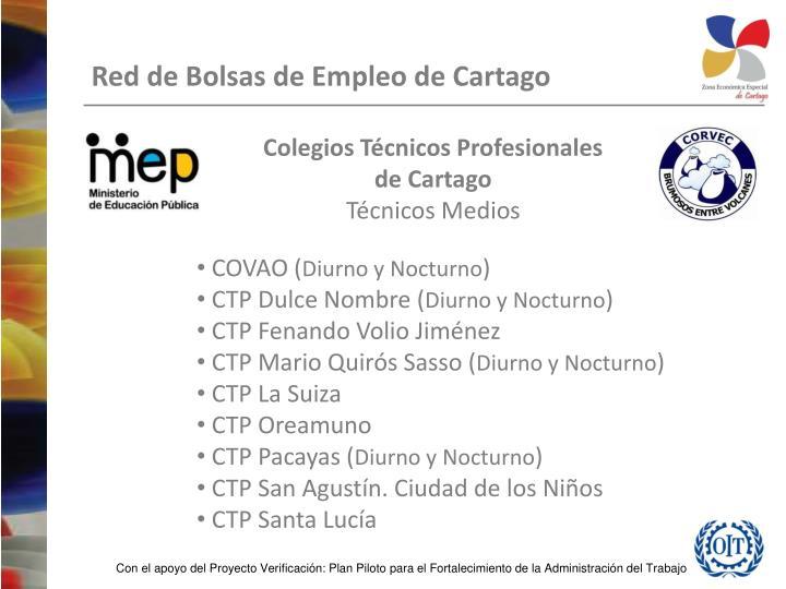 Colegios Técnicos Profesionales
