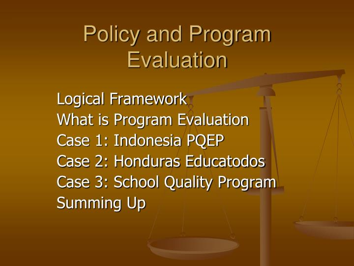 policy and program evaluation n.
