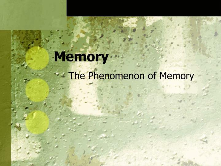 memory n.