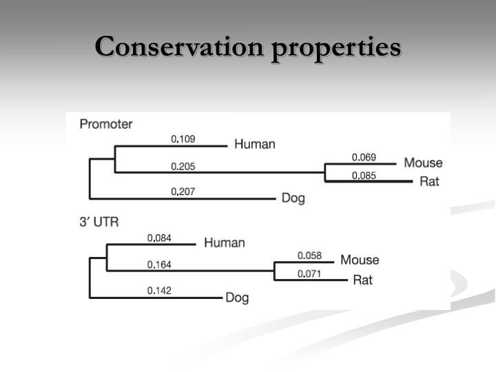 Conservation properties