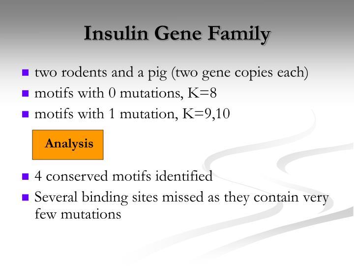 Insulin Gene Family