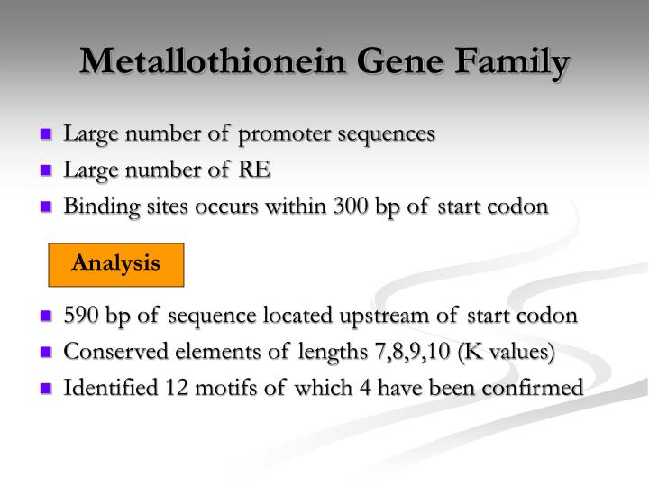 Metallothionein Gene Family