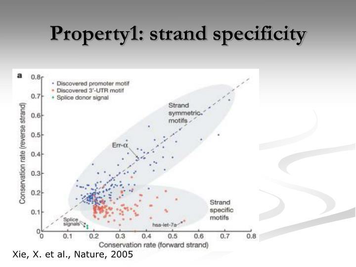 Property1: strand specificity