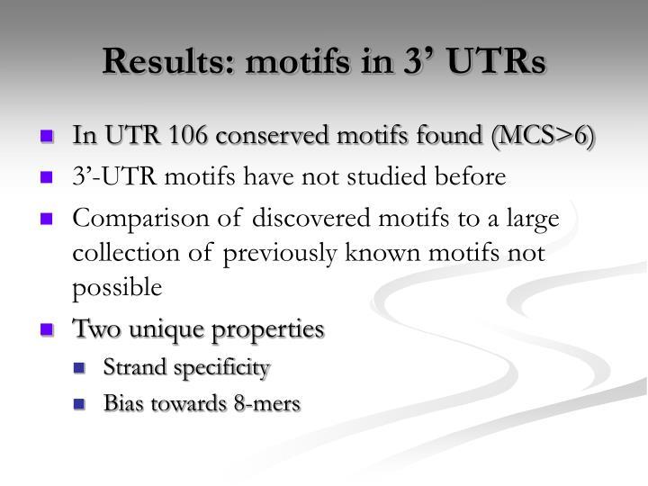 Results: motifs in 3