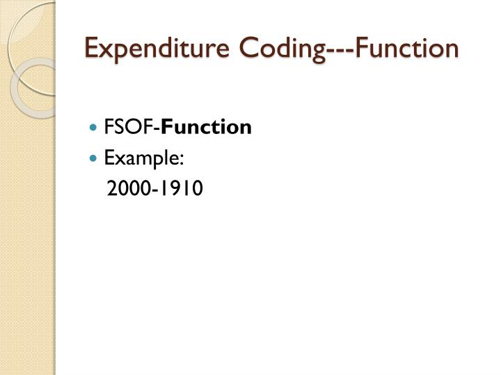 Expenditure Coding---Function