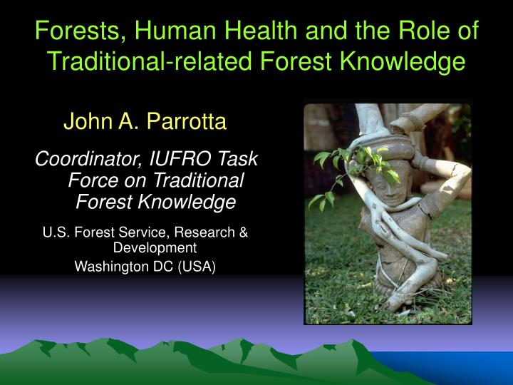 forests human health and the role of traditional related forest knowledge n.