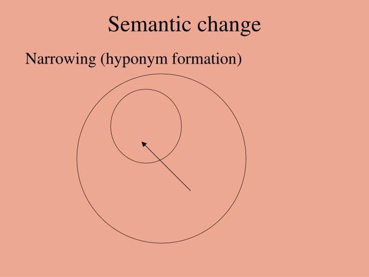 semantic narrowing