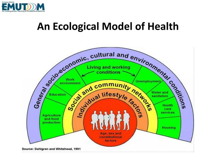 An Ecological Model of Health