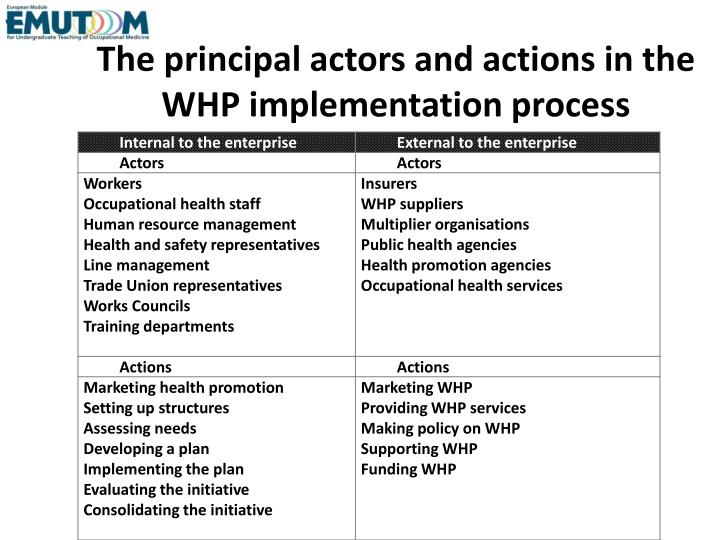 The principal actors and actions in the WHP implementation process