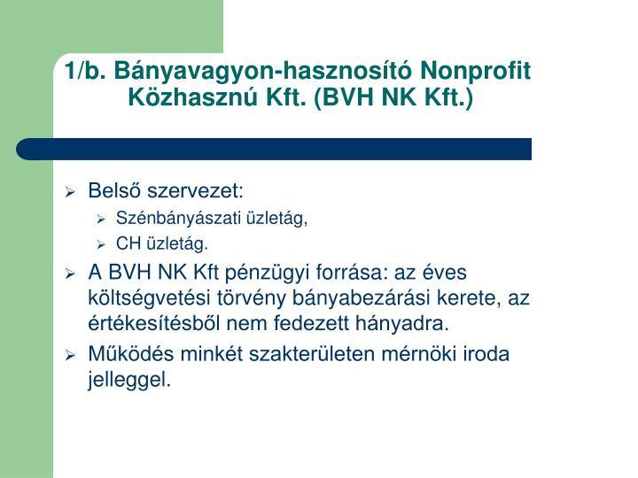 1 b b nyavagyon hasznos t nonprofit k zhaszn kft bvh nk kft