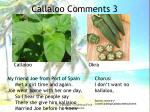callaloo comments 3