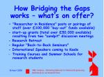 how bridging the gaps works what s on offer