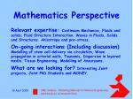 mathematics perspective