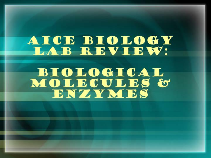 biology coursework amylase Search practical biology topics cells to systems factors affecting enzyme activity measure the time taken for amylase to completely break down a sample of.