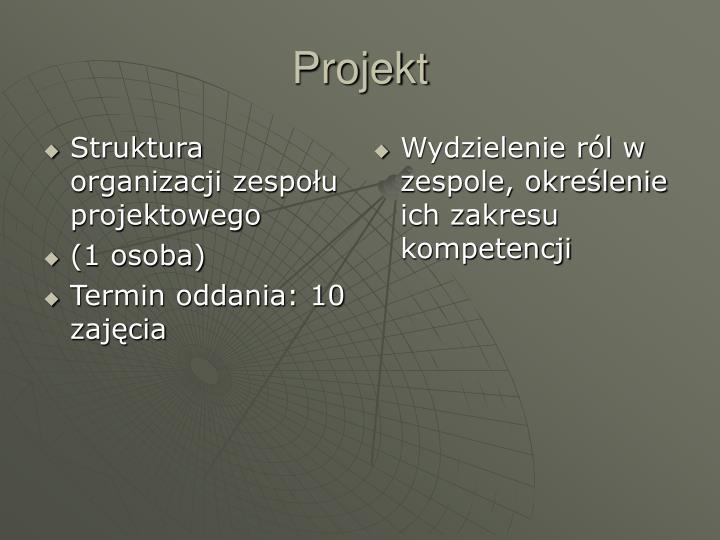 Struktura organizacji zespołu projektowego
