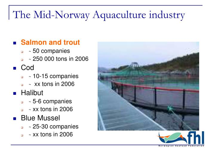 The mid norway aquaculture industry