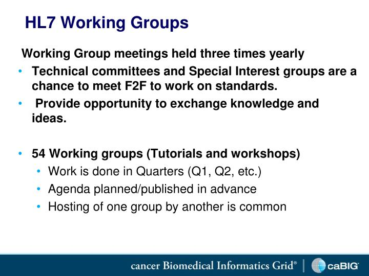 HL7 Working Groups