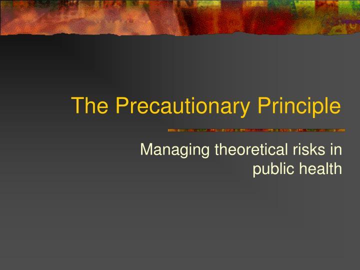 the precautionary principle n.