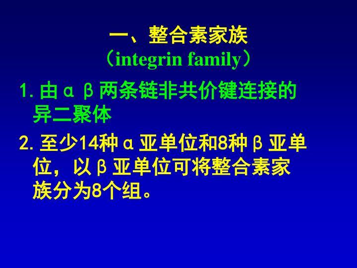 一、整合素家族