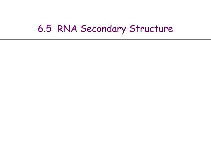 6 5 rna secondary structure