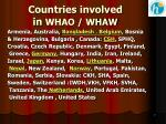 countries involved in whao whaw