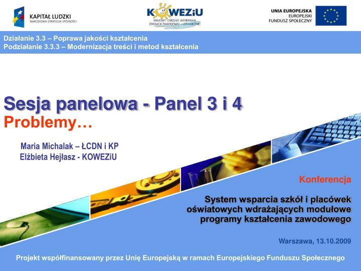 sesja panelowa panel 3 i 4 problemy n.